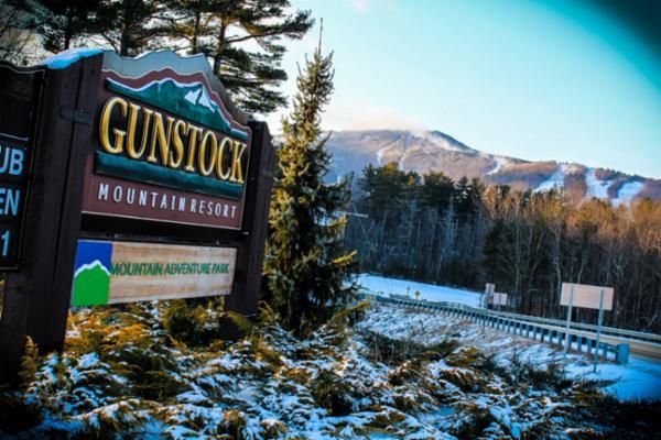 gunstock