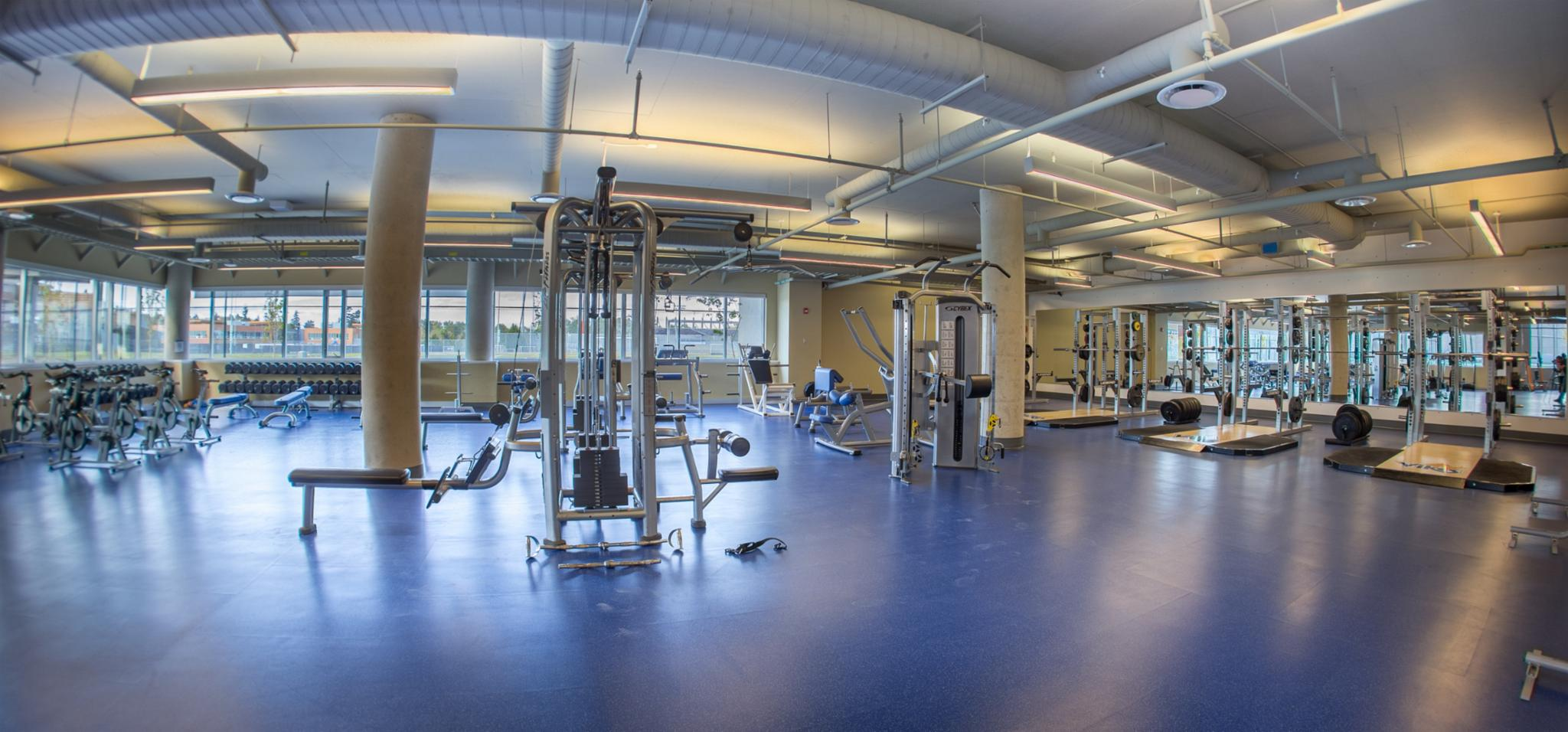Experience University Of Victoria In Virtual Reality - Weight room design